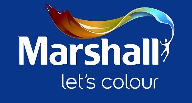 Marshall Visualizer