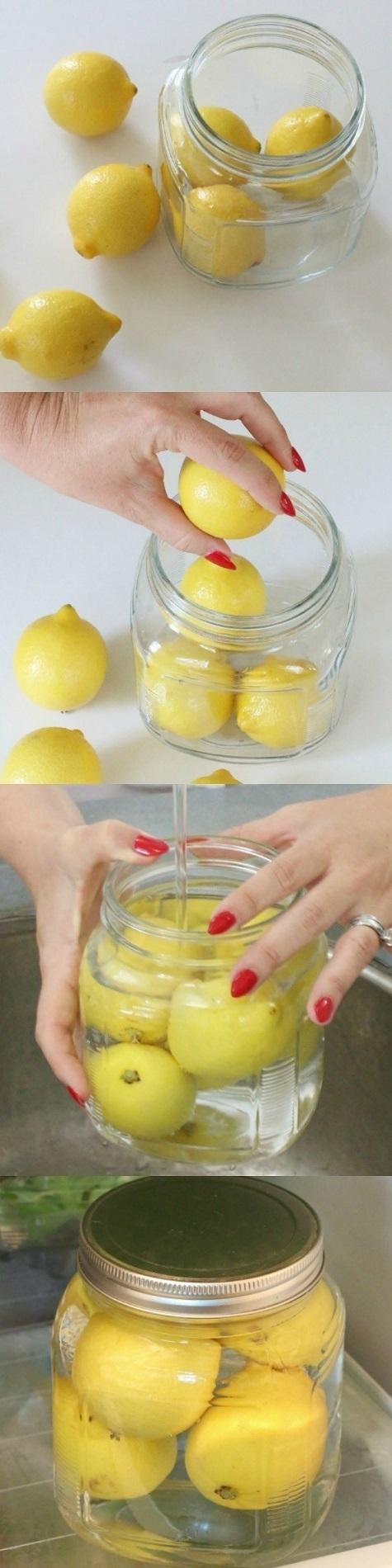 limonu bozulmadan saklamak