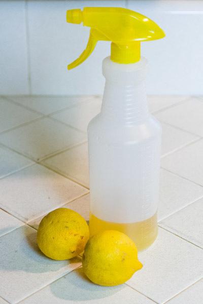 sirke ve limon temizlik malzemesi