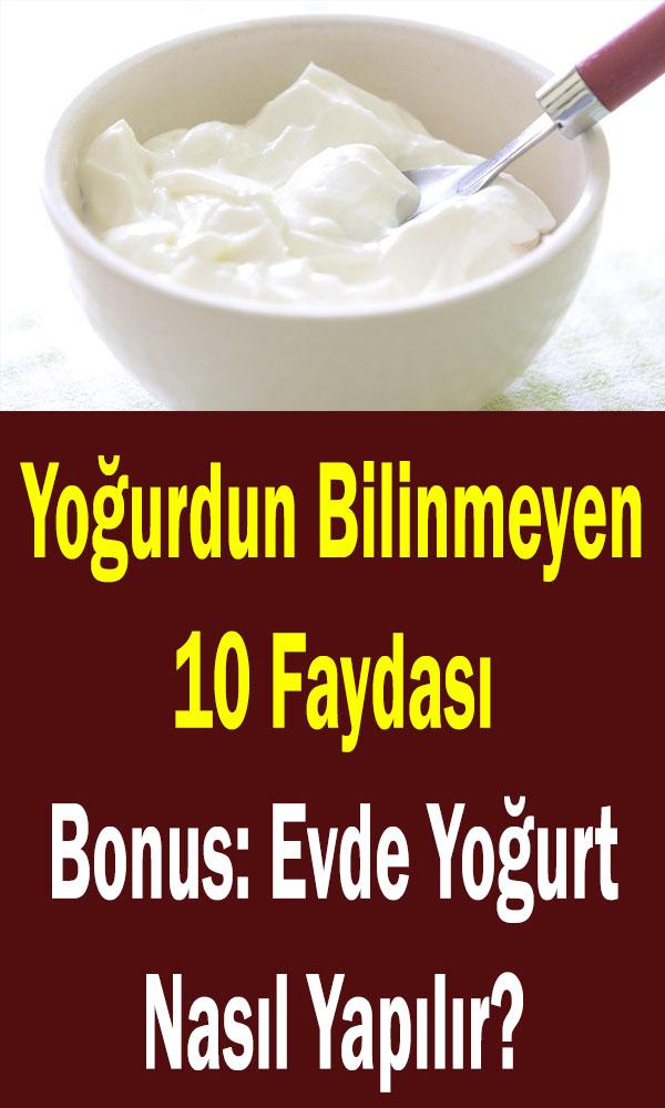 yoğurdun faydaları ve evde yoğurt nasıl yapılır