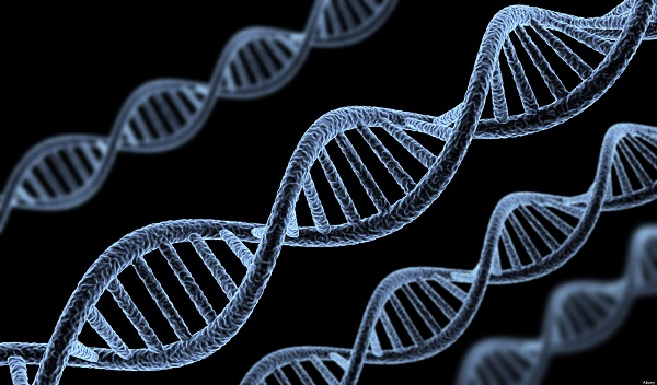 Kilo almak genetik olabilir mi