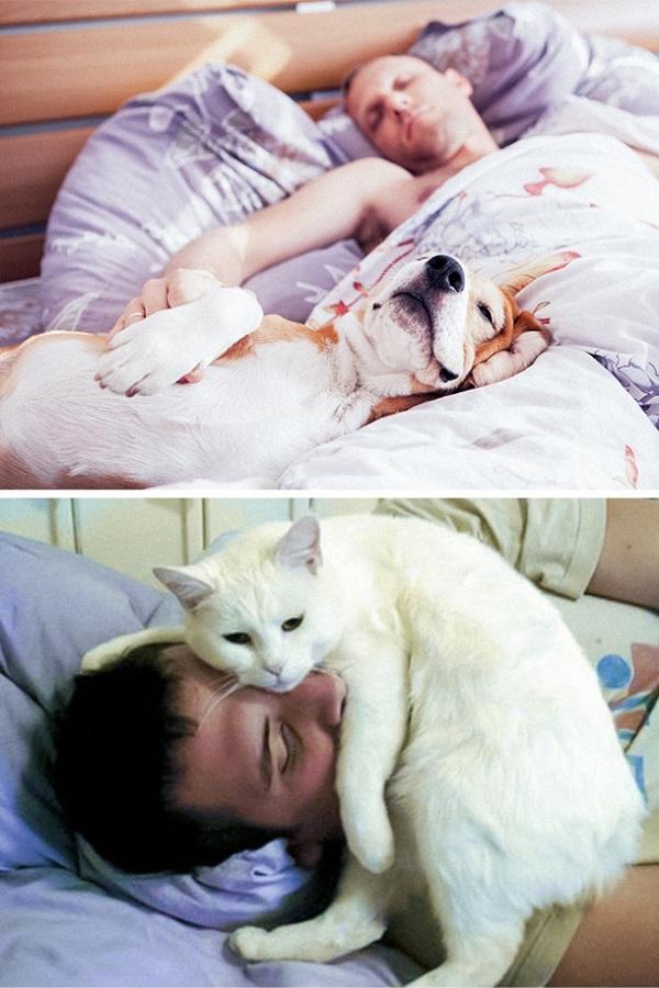 Sahipleriyle uyurken
