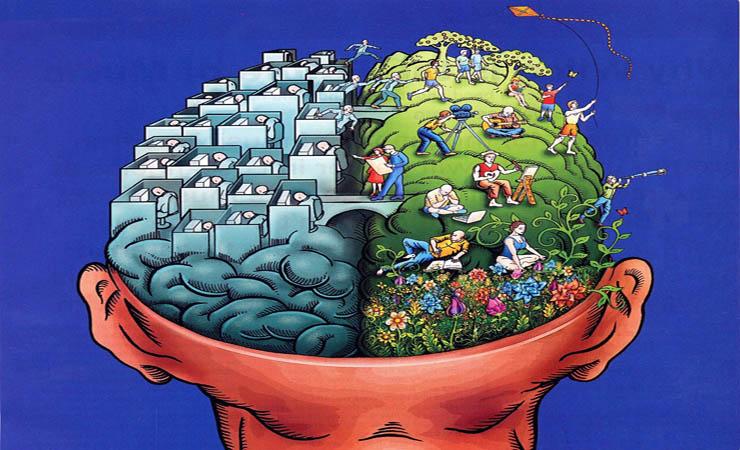 Beyin hakkında ilginç bilgiler