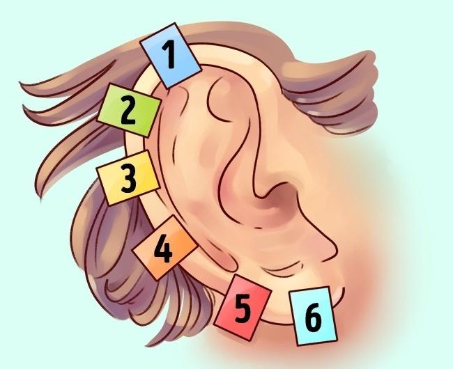 Kulak refleksolojisi