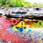 Beş renkli nehir