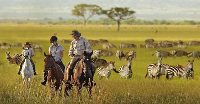 Kenya Atlı Safari