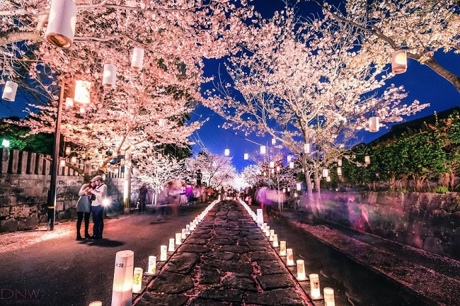 Japonya ışıklandırmalar