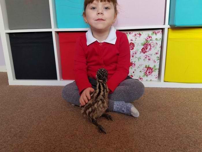 yavru kuş ile küçük kız