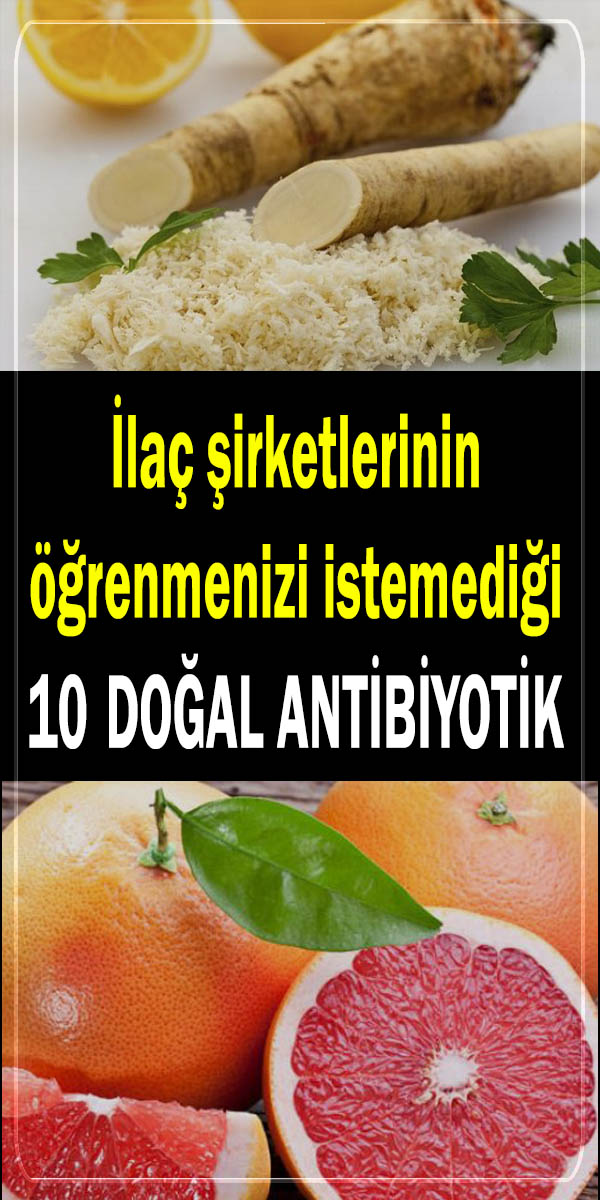 Doğal antibiyotik gıdalar