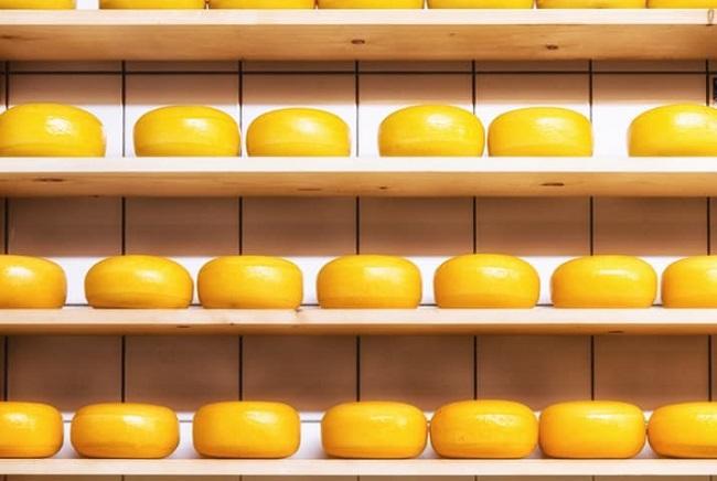 tekerlek peynir